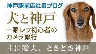 神戸駅前店店長ブログ
