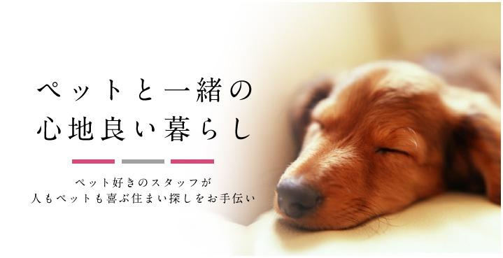 神戸ではじめる新しい暮らし